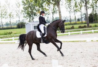 How to Ride Medium Canter dressage