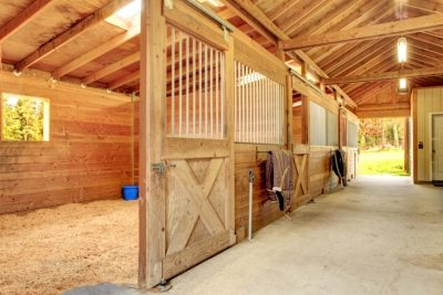 How to Get Your Equestrian Yard Ready for Summer